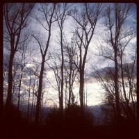 December_15th_Evening_I