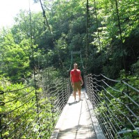 Raven Cliff Falls Suspension Bridge 2