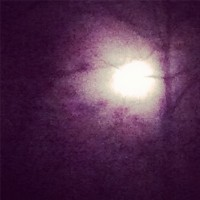 TR_A_December_Moon